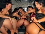 Jeunes bourgoises bourees delirent dans une limousine