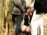 Libertine amatrice de queue dans les bois