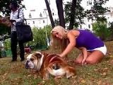Cette fille fait la chienne pour une queue noire