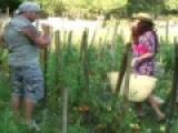 Jolie femme baisée par un paysan dans son jardin